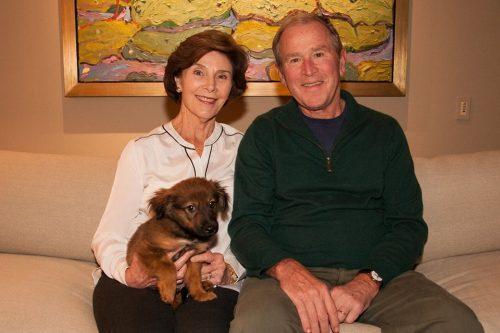 Laura e George W. Bush adotaram o cão e o levaram para casa no mesmo dia. (Foto: Reprodução / George W. Bush)
