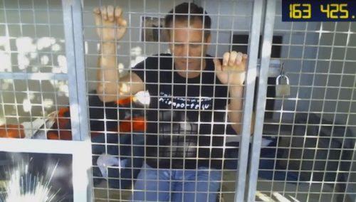 Durante os três dias que passou no abrigo, Rémi conseguiu arrecadar mais de 200 mil Euros e ajudou 150 animais a serem adotados. (Foto: Reprodução / Facebook Rémi Gaillard)