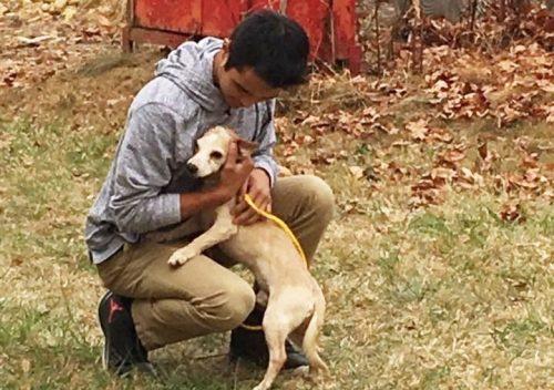 Alex Perez é um jovem que tem muito amor pelos cães. (Foto: Reprodução / Valinda Cortez)