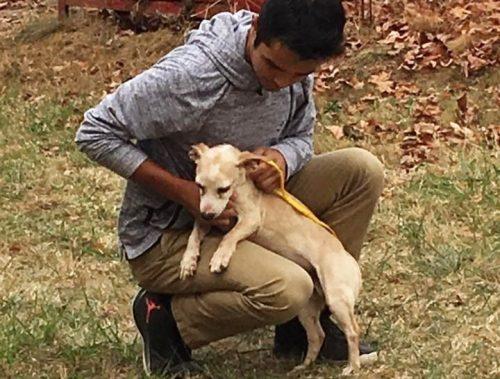Eles sempre faz o que pode para ajudar um animal que esteja precisando. (Foto: Reprodução / Valinda Cortez)