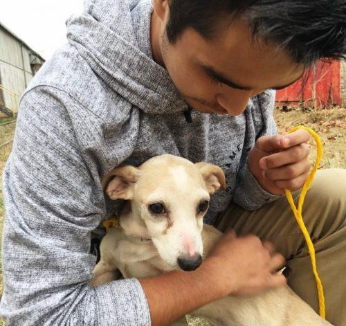 O jovem realmente se preocupa com os animais necessitados. (Foto: Reprodução / Valinda Cortez)