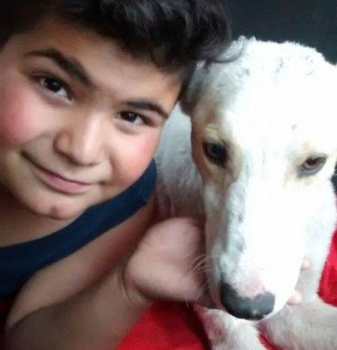 Mauco encontrou um cão machucado e abandonado na rua e, apesar das dificuldades que sua família enfrentava, ele decidiu ajudar o animal. (Foto: Reprodução / Courtesy photo)