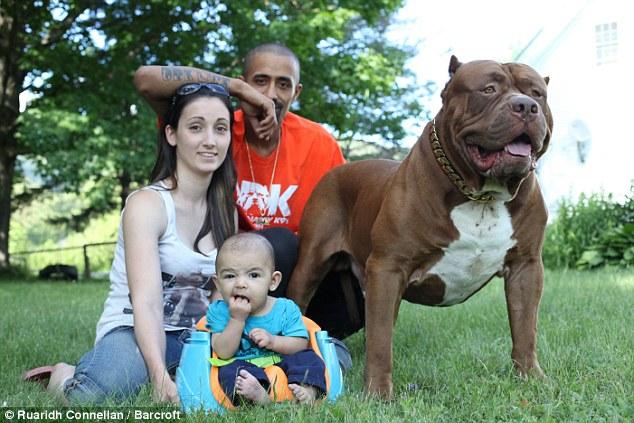 Lisa, Marlon, Jackson e o pitbull Hulk. (Foto: Reprodução / Daily Mail UK)