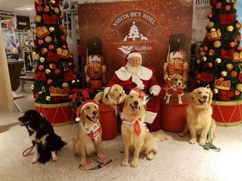 Agora é a ves dos pets conhecerem o Papai Noel. (Foto: Reprodução / RioMar Kennedy)