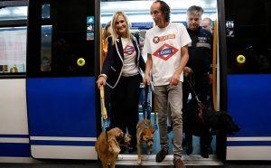 Em julho de 2016 a cidade de Madri liberou o transporte de animais de estimação no metrô local. (Foto: Reprodução / Twitter / Comunidad de Madrid)