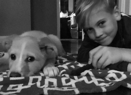 Hoje, Harley faz parte de uma família muito amorosa. (Foto: Reprodução / Dog Tales Rescue and Sanctuary)