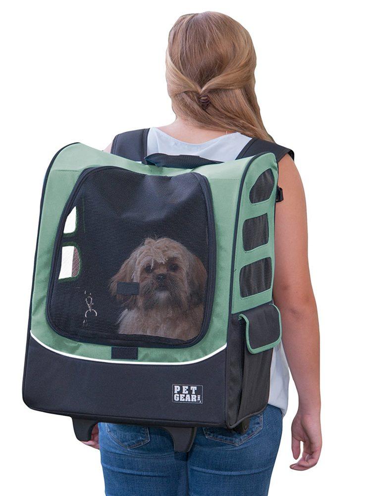 Bolsa Para Transporte De Cachorro Em Avião : Cleo pires e outros aderem a moda de carregar o pet em