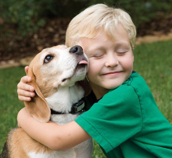 ter um animal de estimação pode ser melhor para crianças do que ter