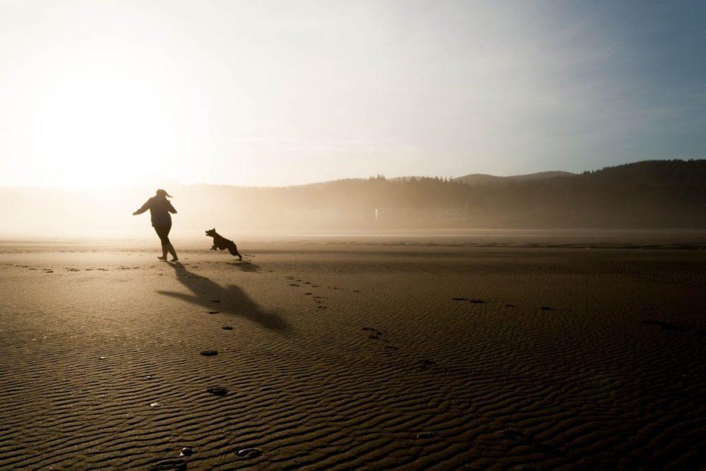 Cão e dona correndo na praia no amanhecer