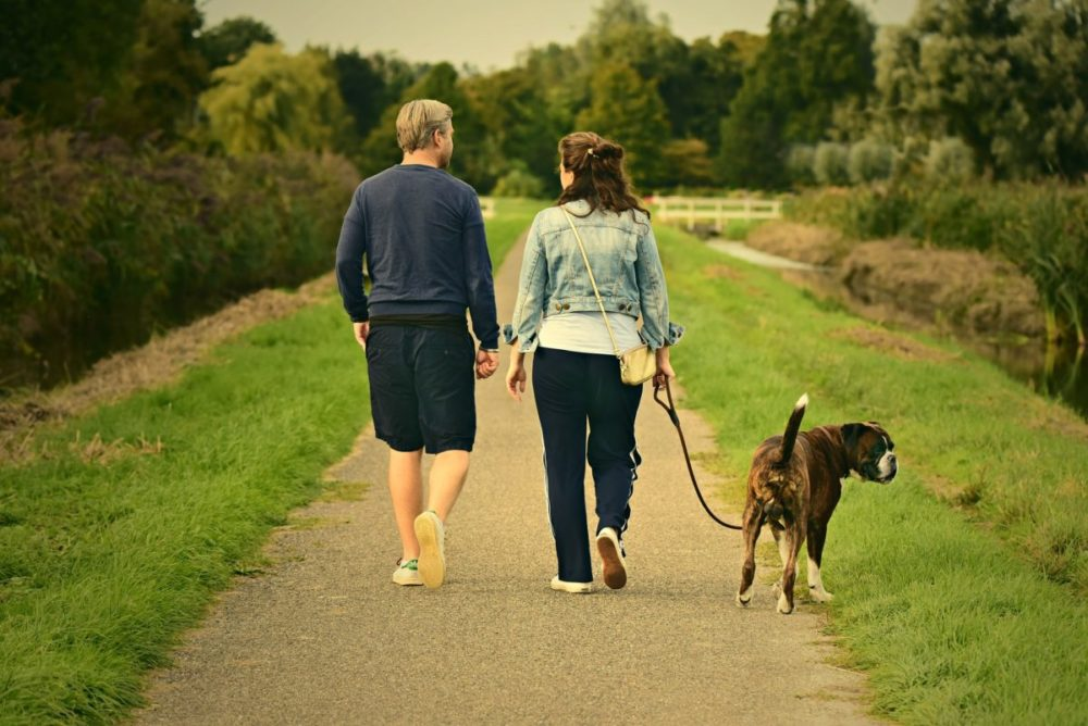 Casal caminha com cachorro da raça boxer