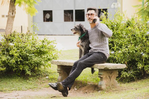 Como ensinar o cão o que é não