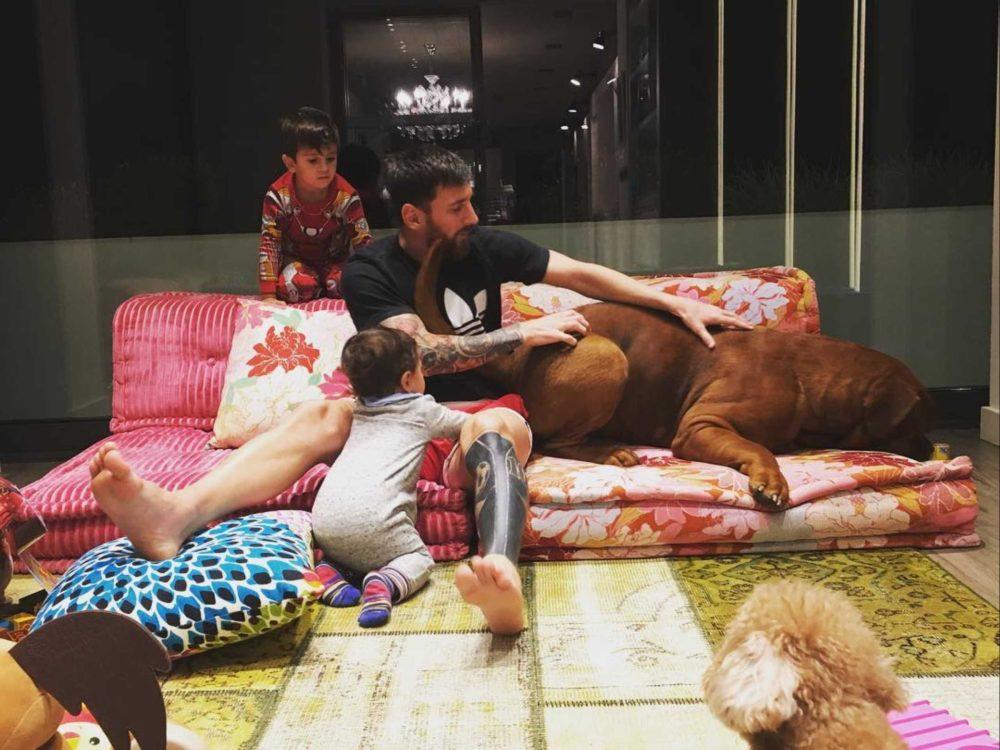 Cão gigante de Messi
