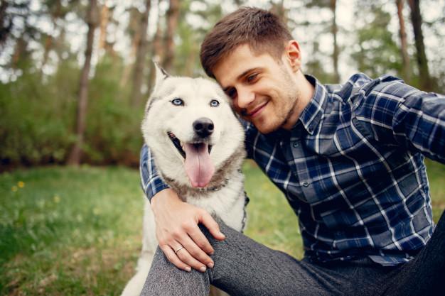 como evitar que o cachorro fique entediado