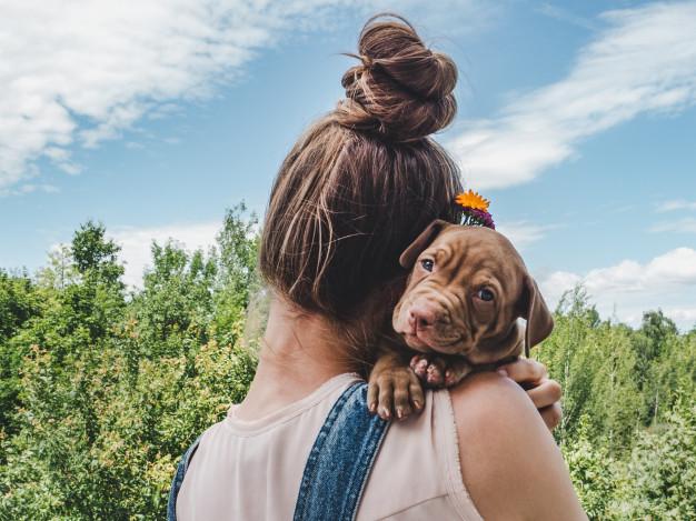 Deixar o cão com um amigo