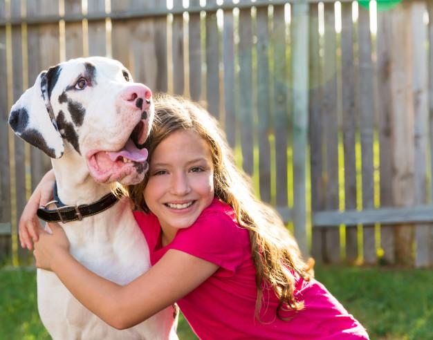 cachorros grandes
