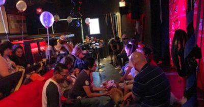 Cachorros no cinema. Foto: instagram @k9cinemas