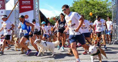 Pet Run 2019. Foto: reprodução site oficial pet run