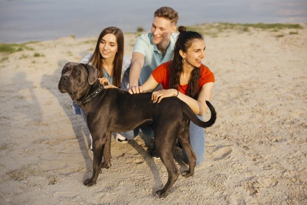 família com o cão no litoral