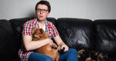 Cães combatem a ansiedade