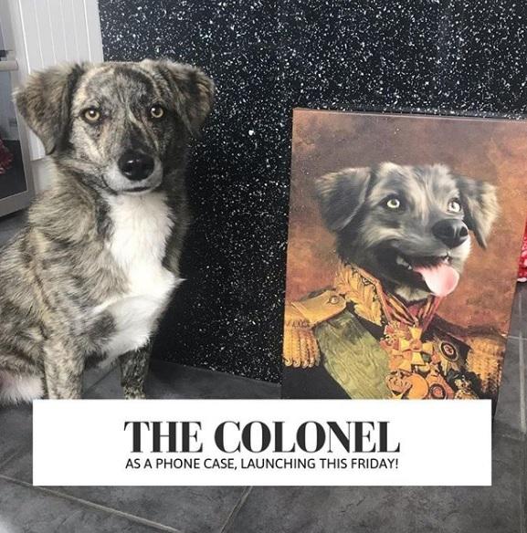 quadros de cães com trajes da realeza