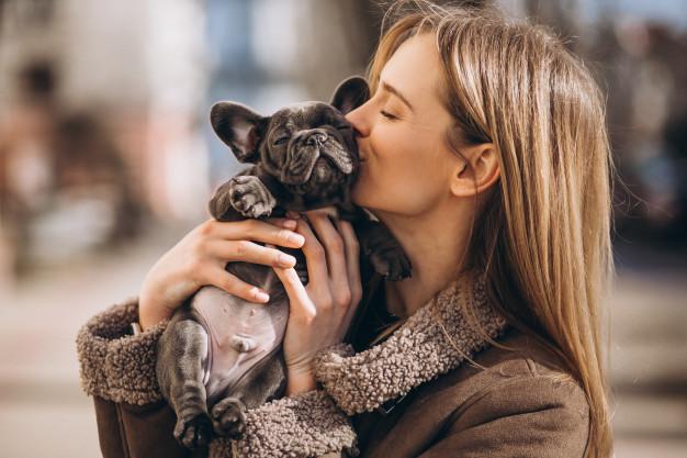 Socialização do cão