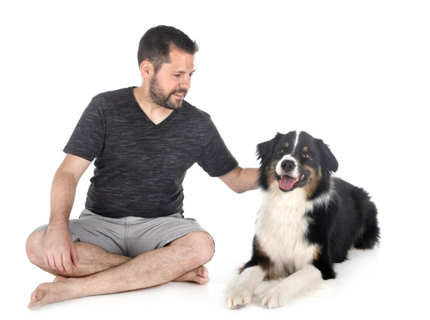 reforço positivo para cachorros