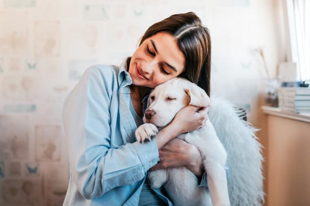 Cachorro pode ficar sozinho em casa o dia inteiro