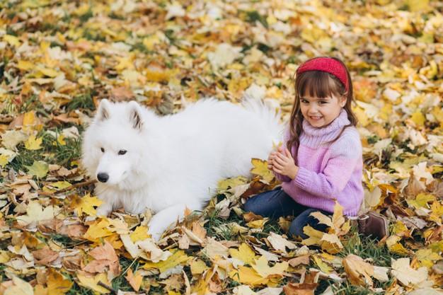 menina e seu cãozinho