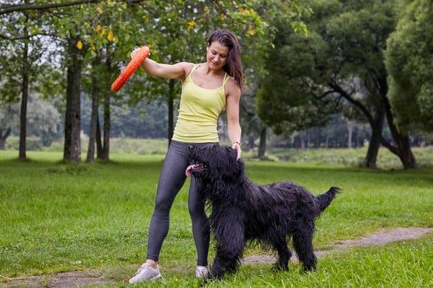 tutora com seu cão